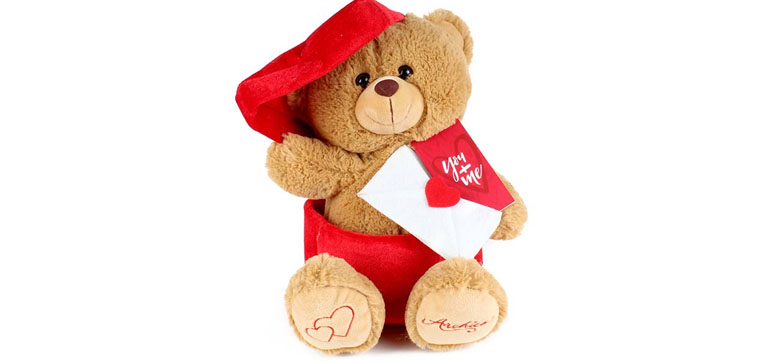 Mailman Teddy That Express Your Words